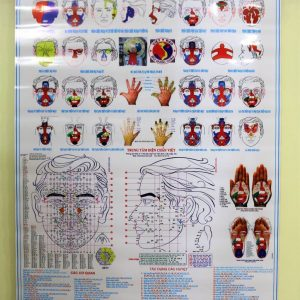 Tranh 32 Hình Phản Chiếu & các huyệt thường dùng – Tất cả trong một (khổ A0)