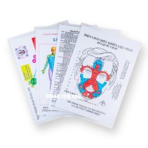 Bộ hình A4 – Phản chiếu & huyệt tương ứng – Ứng dụng hiệu quả