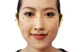 Liệu pháp Diện Chẩn tác động tám vùng trên mặt (tám vùng sinh mệnh)